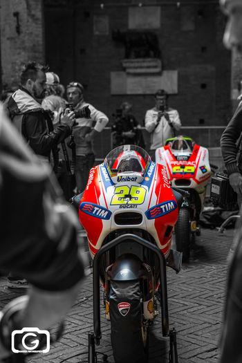 Ducati team Moto Gp
