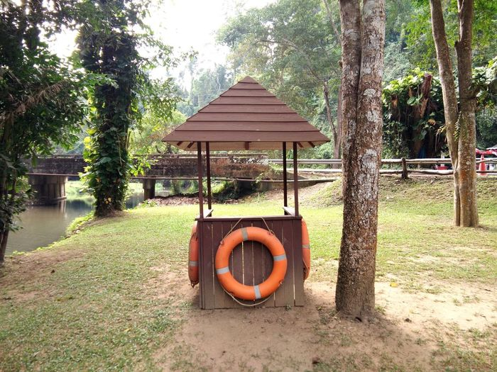 Traditional wood Guard house and orange life ring in a green rural area and waterfall in the forest.Life savior Guard House Architecture Circle Day Geometric Shape Grass Growth Land Life Belt Life Ring Life Saviors Nature No People Orange Color Outdoors Plant Protection Security Tranquility Tree Tree Trunk Trunk Wood - Material Wooden Post