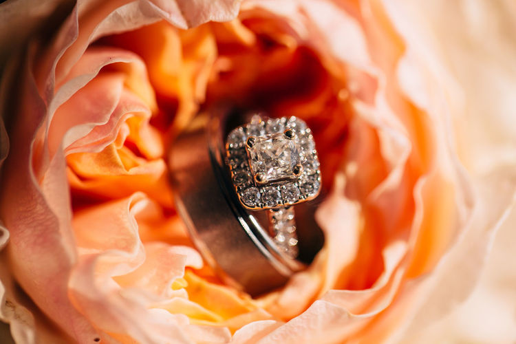 Close-up Jewelry No People Ring Rosé Beauty In Nature Rose - Flower Flower Diamond - Gemstone Celebration Plant Love Flowering Plant Wedding Event Studio Shot Wealth Elégance Macro Nature Luxury Precious Gem