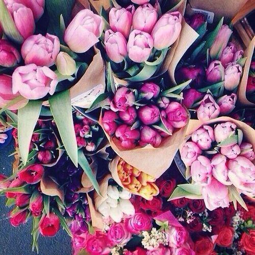 Beautiful Flowers💐✨