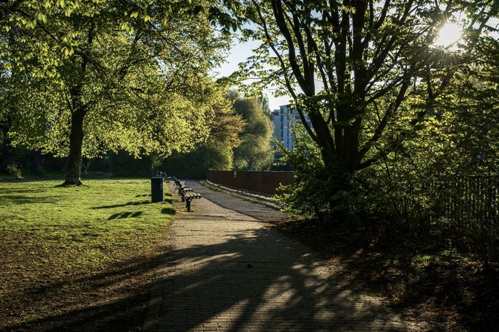 Getty Images Park Day Grass Growth Hamburg Hamburger Ansichten Hamburgmeineperle Have A Nice Day♥ Isebek Isebekkanal Morning Morning Light Nature No People Outdoors Shadow Sky Street Street Photography Streetphotography Sunlight Tranquility Tree The EyeEm Collection Premium Collection