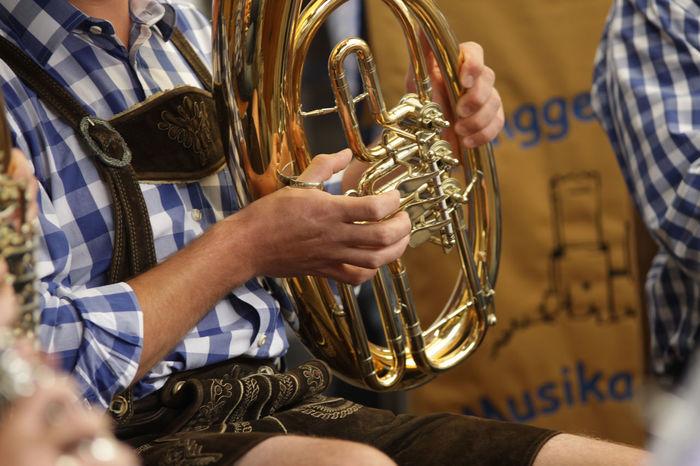 Baritone  Brass Band Brass Instrument  Close-up Hand Leather Pants Man Music Musical Instrument