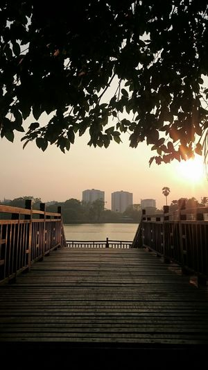 Q Showcase March Bridgeat Sunset Sunset Silhouettes Sunset_collection No Edit, No Filter, Just Photography Kandawgyi Kandawgyi Park Water Nature At Doorstep Tree_collection  Trees Leaves Sunset Through The Leaves How Do We Build The World? The Changing City in Yangon, Myanmar