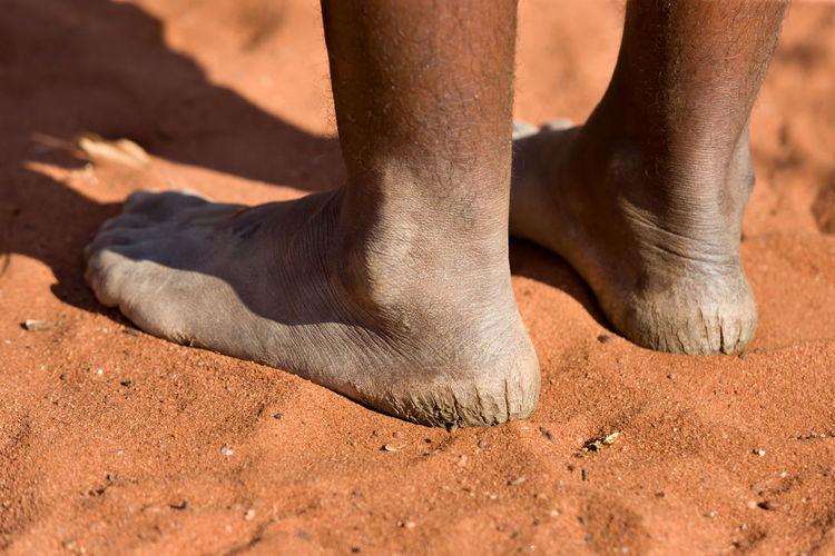 Animal Leg Animal Themes Animals In The Wild Arid Climate Beach Close-up Day Human Body Part Human Leg Leg Low Section Mammal Nature One Animal One Person Outdoors People Sand