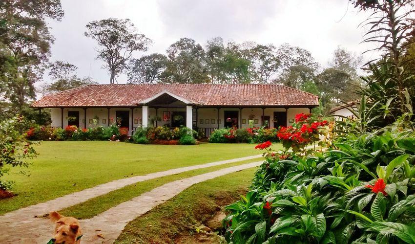 Santander-Colombia Cafe Culture Landscape_photography