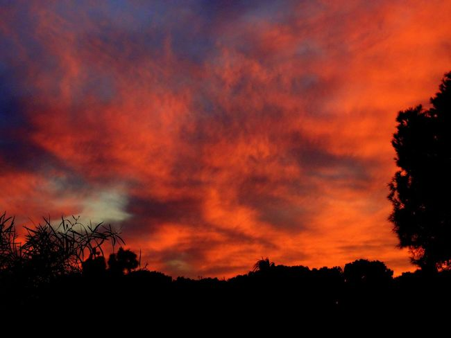 Clouds in flames, Muchavista, El Campello, Alicante. EyeEm Nature Lover EyeEm Best Shots Eye4photography  Nature Landscape Clouds And Sky Taking Photos Sunset Photography Relaxing