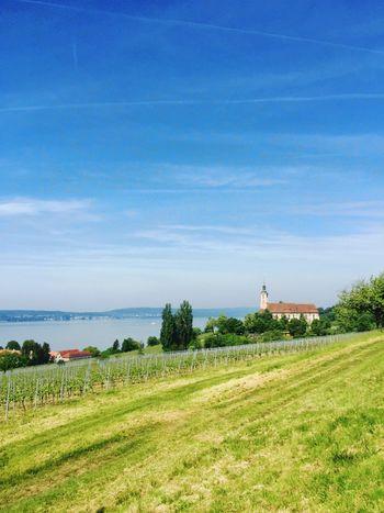 Basilika Birnau am Bodensee Lake Constance