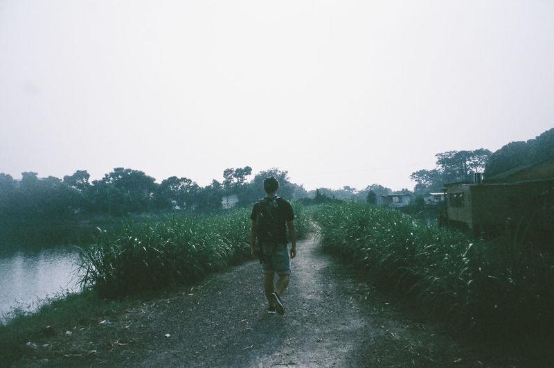 Rear view of man walking on landscape against clear sky