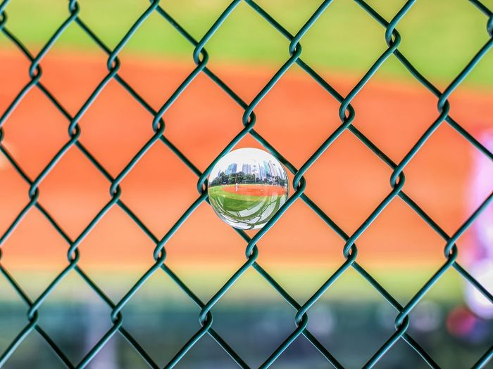 Lensball in Net