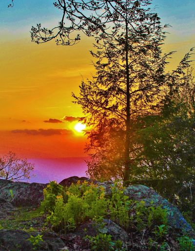Shenandoah Sunset Photoartwork Photo Art