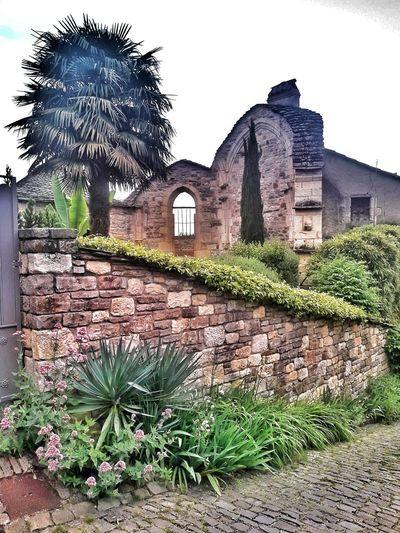 CORDES SUR CIEL Village France Tree History Ivy House Architecture Building Exterior Built Structure Sky Plant Old Ruin