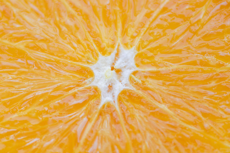 Close up of orange fruit / texture slice orange background Orange Fruit Texture Background Macro Food Fresh SLICE Citrus  Juice Nature Juicy Color Peel Healthy Sweet White Natural Ripe Organic Health Tropical Vitamin Raw Closeup Summer Bright Oranges Yellow Pattern Freshness Circle Tasty Vegetarian Refreshment Water Drink Fruity Skin Delicious Eating Ingredient Exotic Section Slices Cut Sliced Half Wedge View