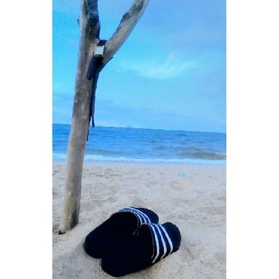 Do u love the beach? Tokbali Beach Seaside Pantai pantaitokbaliloveeveningeveningmoment