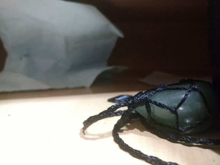 Insect One Animal Animal Themes Animals In The Wild Close-up No People Indoors  Day Nature Quartzite Quartzo Pedra Rock