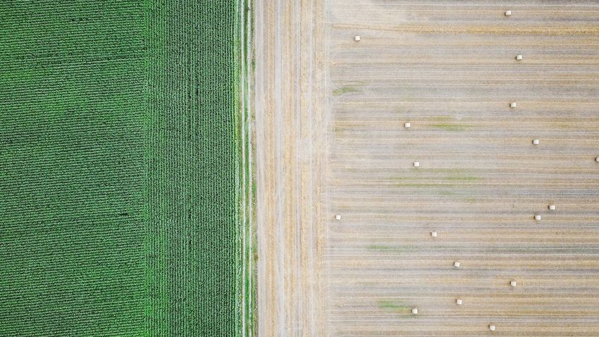 Nature Photography Perspectives On Nature Agriculture Backgrounds Beauty In Nature Dronephotography Droneshot Farm Field Grass Green Color Growth Nature Outdoors Rural Scene Textured