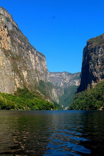 Cañón. Mountain Water Mountain Range Lake Pinaceae Landscape Mountain Peak Scenics Clear Sky Blue Nature Outdoors No People Hiking Sky Pine Tree Forest Beauty In Nature Day Travel Destinations Cañón Del Sumidero Chiapas, México Beauty In Nature Nature Tree