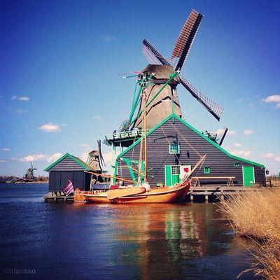 Windmill at #zaanse_schans ?☀☀?# ic_cities #igholland #worldwidephotowalk #igersholland #insta_holland #mokummagazine #gf_daily #gang_family #gramoftheday #holland Igholland Holland Gang_family Gf_daily Igersholland Gramoftheday Worldwidephotowalk Kewikihighlight_bestsofar Mokummagazine Insta_holland Zaanse_schans