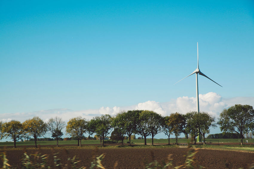 Alternative Energy Clear Sky Day Environmental Conservation Fuel And Power Generation Nature No People Outdoors Renewable Energy Sky Tree Wind Power Wind Turbine Windmill