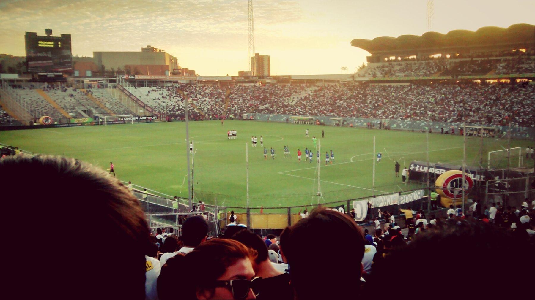 Soccer Football Colo-colo Chile