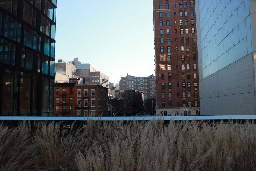 High Line Park, Nyc New York City Building Exterior Outdoors Modern Urban Skyline