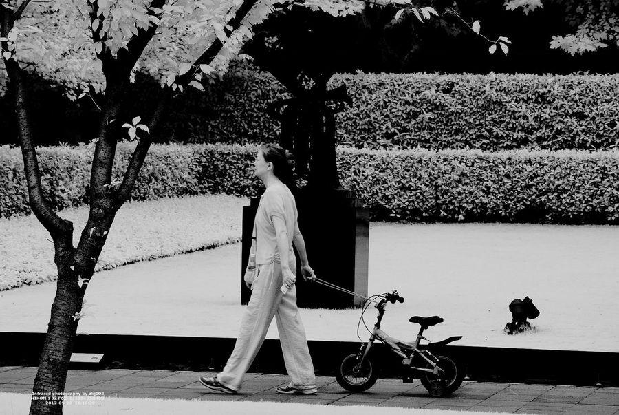 孩子 雕塑公园 喷水 IR 摄影 史密森尼 Shanghai❤ Tree Infrared Color 静安区 摄影展 Shanghai, China Infrared Filter Cıty Life Infrared Photo Infrared Photography Infrared Camera Shanghai Streets Black And White Shanghai Tower Chain Shanghai Infrared Street Building