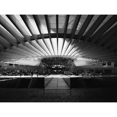 Sky Bird Concrete Love architectureartsteeligersSquareAndroidsteelartarchitectureinteriorgridinstasizeinstagramersstatigramvscovscocamvsco_hubinstagoodinstalentbestbestofvsco16x9best16x9bwdesignlisbonportugalexpoperspective Mentore Calatrava