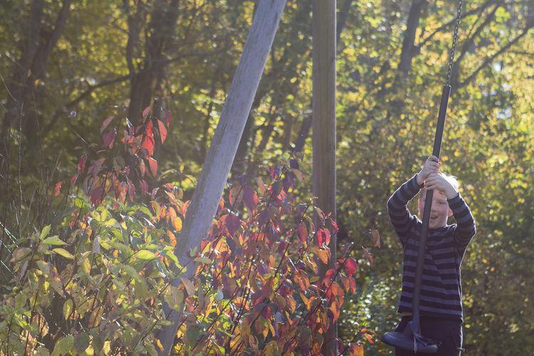 Portrait of boy swinging on swing against trees