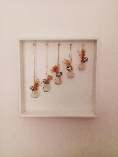 Art Bulbs Ampul Insect Animal Themes Close-up