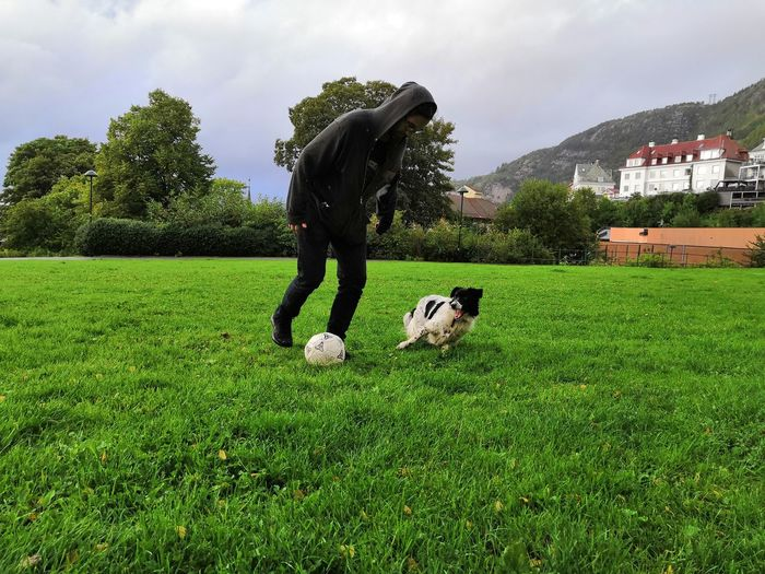 Play ball Rain Fun Happy Old K9 Bordercollie  Man Playing Pets Dog Tree Soccer Field Playing Ball Sky Grass Green Color A New Perspective On Life