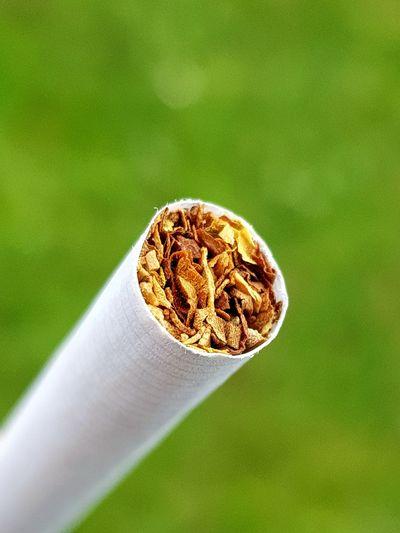 Smokeing Tobacco Product Tobacco Zigarette Rauchen Pause Smoker Cigarette  Cigarettephoto Close-up Grass Green Color