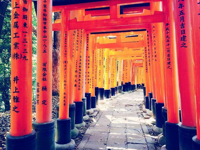 Temple Traveling Japan Shrine - Kyoto