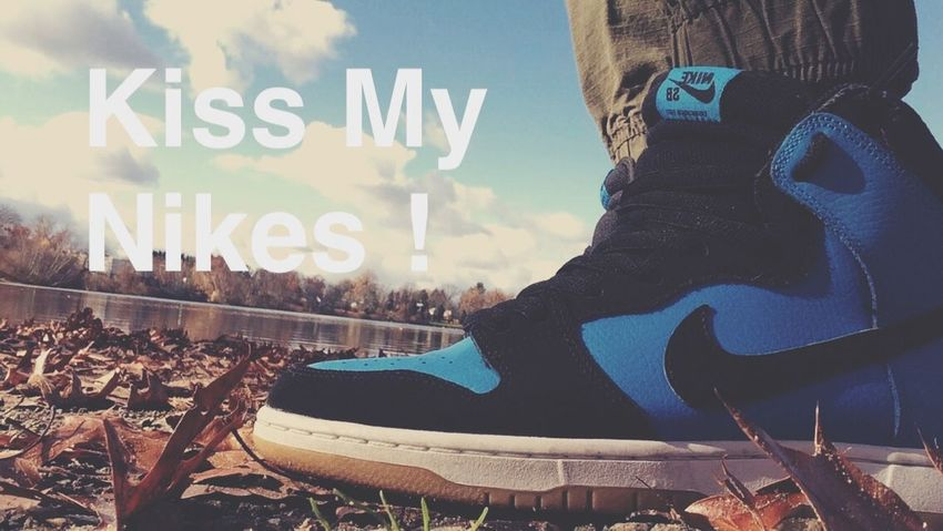 I had these shoes for a while and they still look great ?. Nikesb Nike Nature Landscape