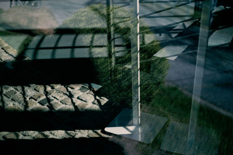 LIGHTS | SHADOWS | REFLECTIONS Nature Shadow No People Plant Sunlight Day Reflection High Angle View Window Indoors  Absence Architecture Close-up Focus On Foreground Relaxation Glass - Material Furniture Pattern Tree