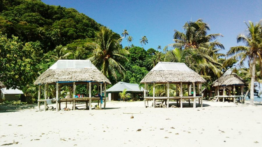 Thatched roof at beach against trees