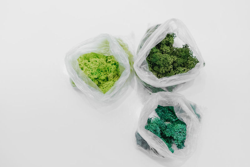 Bag Art And Craft Moss White Background Studio Shot High Angle View Close-up Green Color Lichen Mushroom