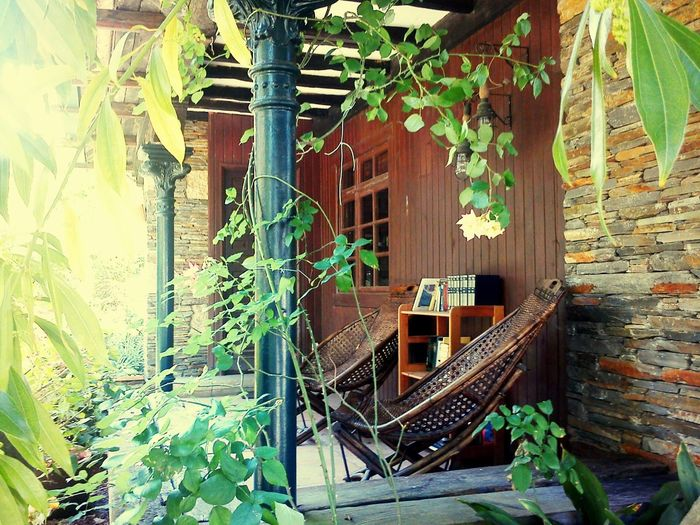 Building Exterior Plant House No People Green Color Nature Relaxing Landscape Tranquility Tranquil Scene Tree My Best Travel Photo