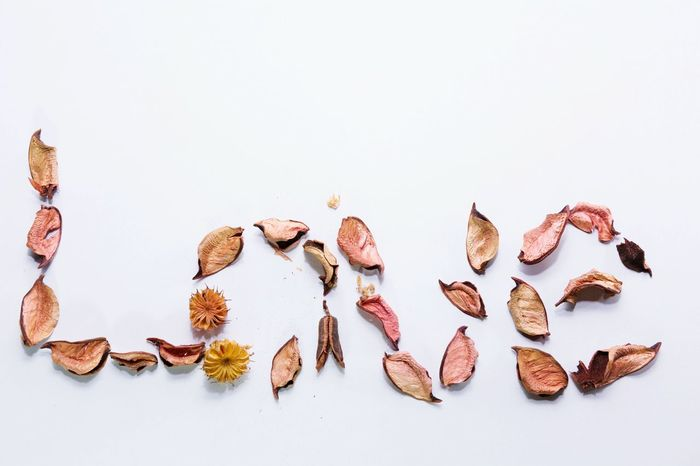 Dry leaf arranged as the word Love Love White Background Isolated White Background Valentine Couples❤❤❤ Foreverlove