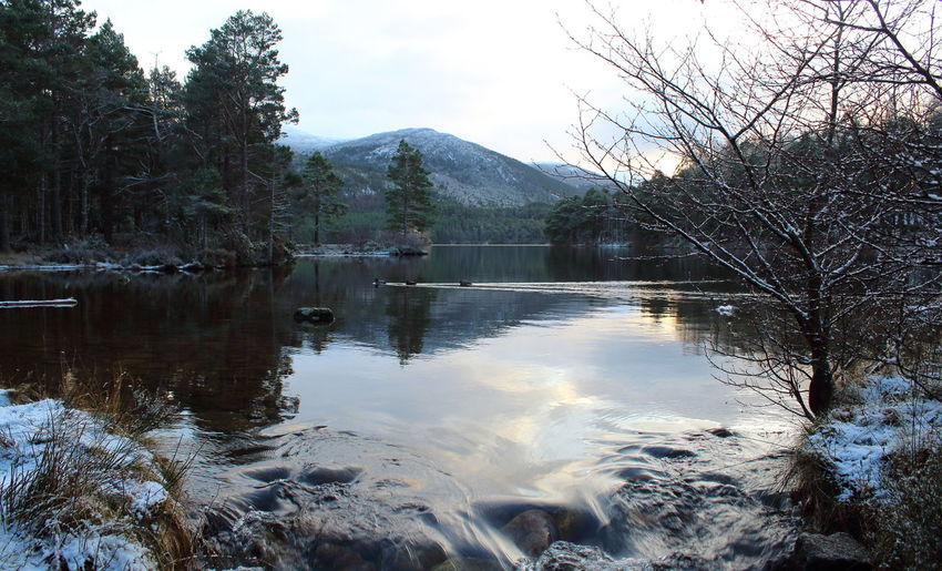Shades Of Winter Cairngorms National Park Dark Water Loch An Eilein Scotland Beauty In Nature Highlands Lake Landscape Mountain Nature No People Outdoors Reflection Scenics Sky Tranquil Scene Tranquility Tree Water