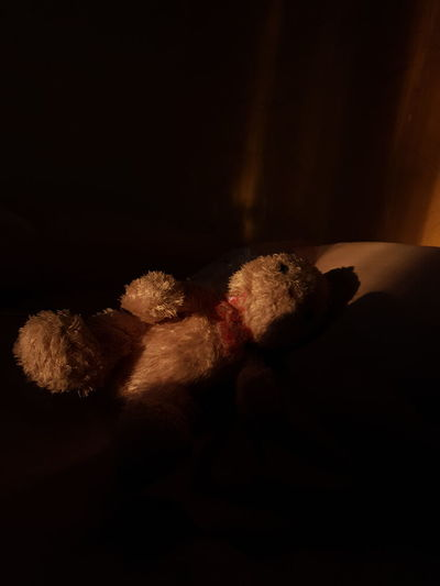 Toy sleeping on bed