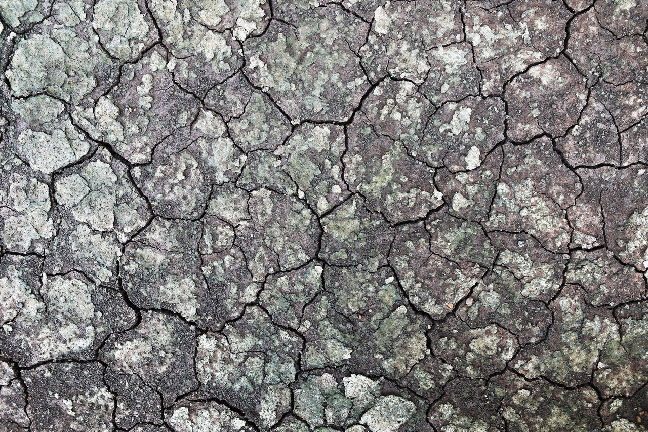 full frame, backgrounds, cracked, textured, drought, pattern, dry, no people, climate, arid climate, day, scenics - nature, rough, environment, nature, natural pattern, extreme terrain, outdoors, close-up, abstract backgrounds, concrete