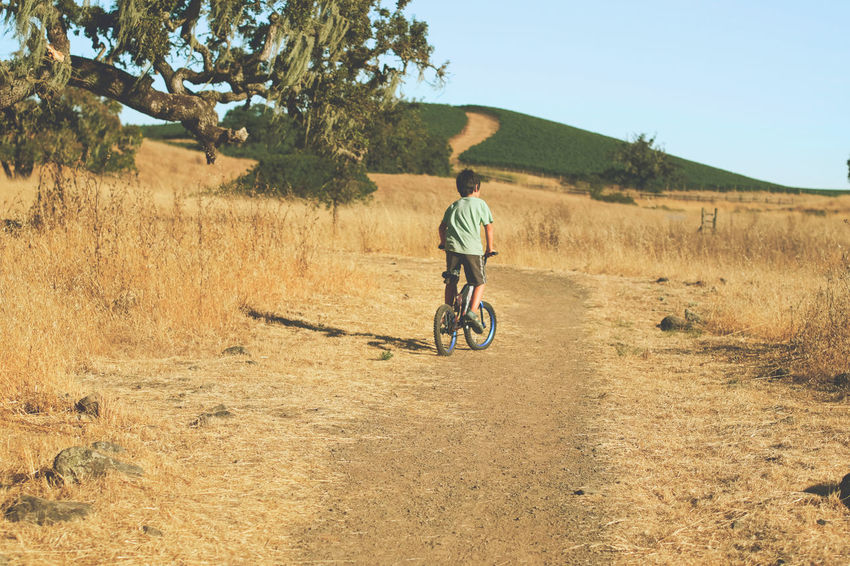 6 year old boy riding his bike in dry landscape 6 Years Old Bicycle Boy Child Childhood Crane Creek Day Full Length Grass Landscape Men Mountain Bike Nature One Person One Young Man Only Only Men Outdoors People Real People Regional Park Riding Sky Transportation Tree Young Adult Breathing Space