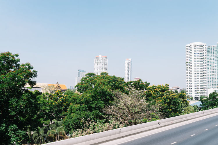 View of a Blooming Tree and the City-Scape from a Highway Blooming Building Exterior City Clear Sky Everyday Life Greenery Growth Modern Nature Nature In Urban A No People Outdoors Road Sky Skyscraper Sunny Day Tree Tree Urban Landscape Urban Life View From Highway Live For The Story
