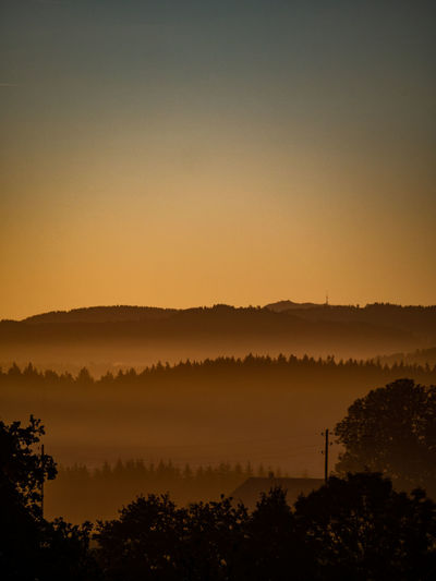 Beauty In Nature Copy Space Environment Fog Growth Hazy  Idyllic Landscape Nature No People Non-urban Scene Outdoors Plant Scenics - Nature Silhouette Sky Sunset Tranquil Scene Tranquility Tree