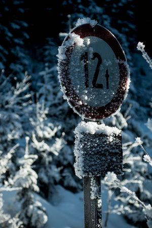 Damn it's cold Explore Discovery Bokeh Metal Water Wood Freezing Freezing Cold Temperature Belowzero Forest Streetsign Bridge Water Crystal Winter Snow Cold Temperature Frozen No People Focus On Foreground Nature Outdoors Day Snowflake Tree Freshness