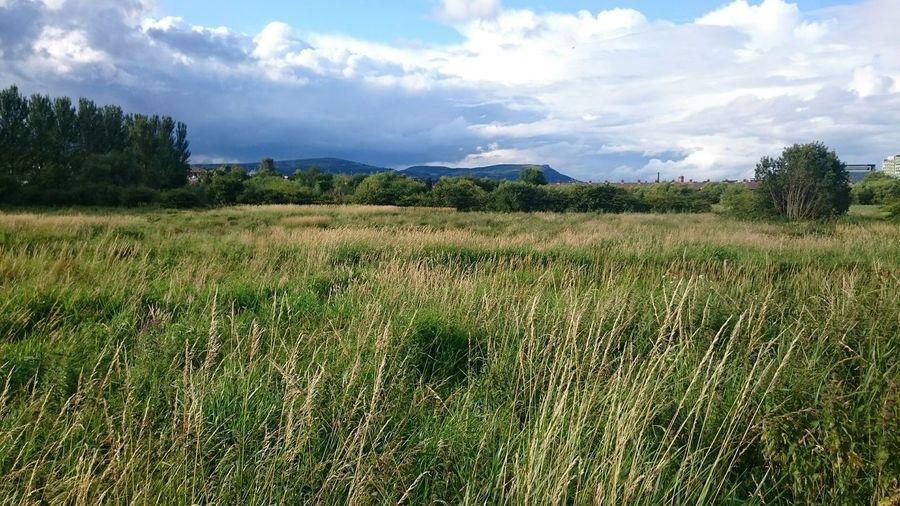 Northern Ireland Ireland🍀 Eyeem Ireland Irelandinspires Discover Ireland Discover Northern Ireland Bogland