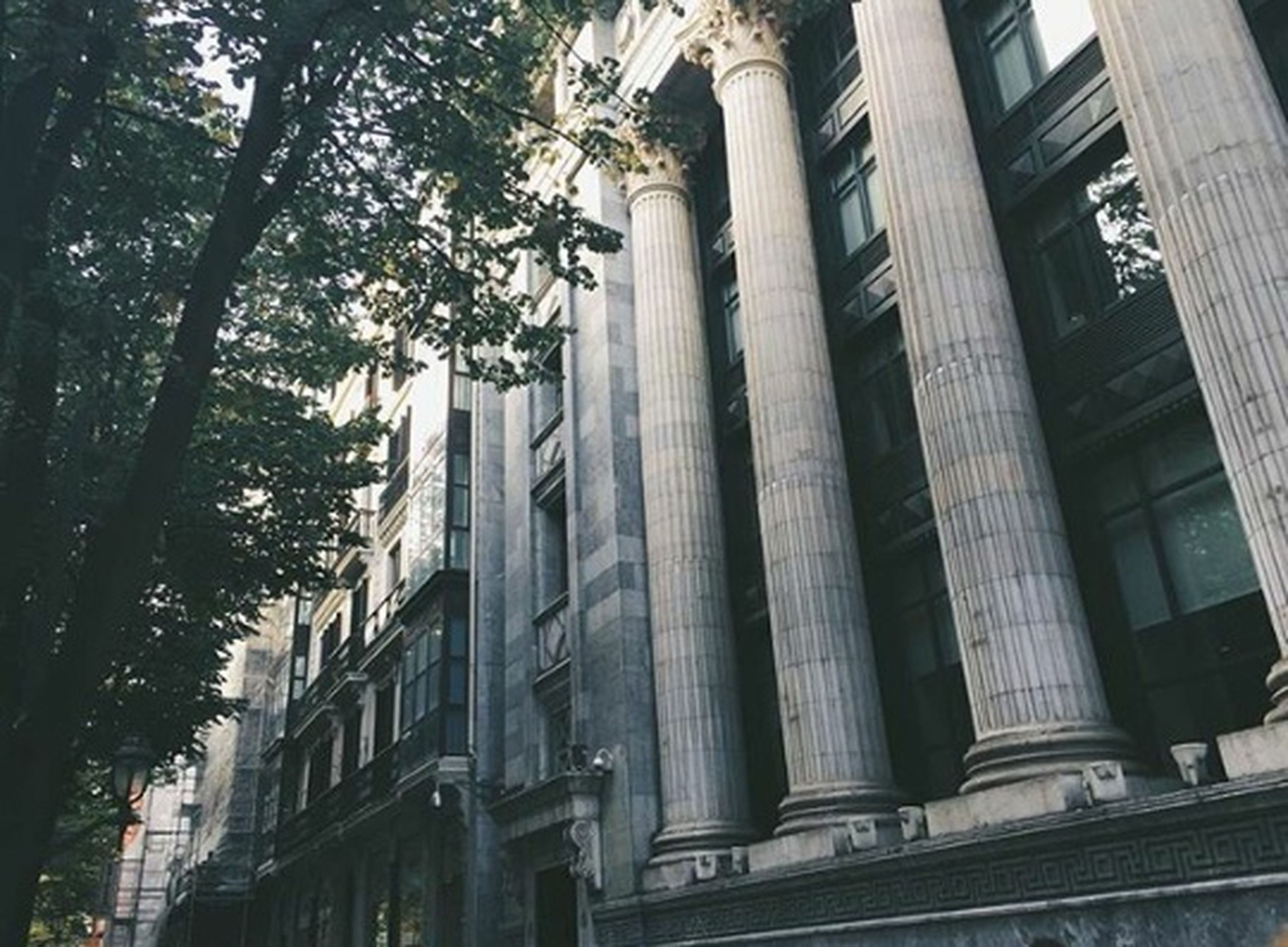 architecture, building exterior, built structure, low angle view, tree, building, window, city, architectural column, day, outdoors, no people, history, facade, architectural feature, statue, travel destinations, sky, sculpture, residential building