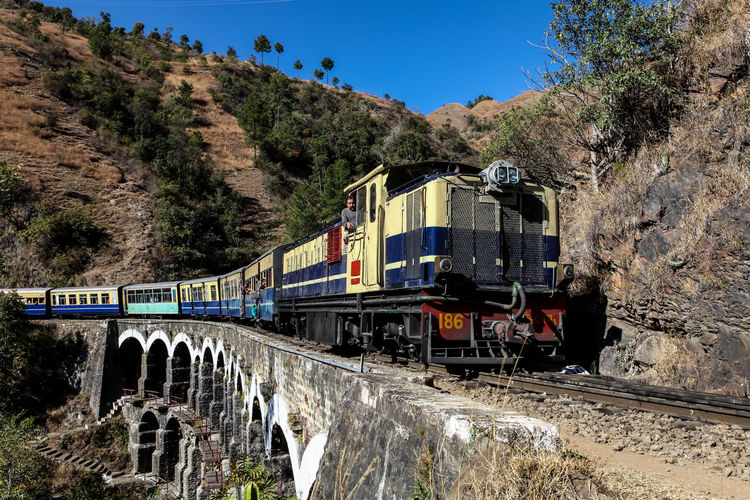 Travel Train - Vehicle Mode Of Transport Transportation Tree Rail Transportation Sky No People Outdoors Day Heritage World Heritage India Streetphotography Indianrailways ShimlaKalkaRailway Himachalpardesh Shimla Public Transportation Land Vehicle Historical Toy Train Rail Tree Bridge