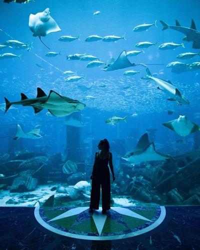 Woman standing in aquarium