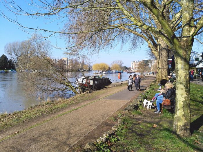 Walking past the River Thames... Riverside River View River Followforfollow Follow4follow Followback Like4like Riverthames Boats Trees And Sky Trees Branches Water Pathway Path Nature People People Walking  London Kingston Upon Thames Kingston Sunshine Warm Sunny