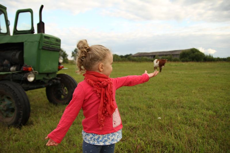 Optical illusion of girl holding cow on grassy field by tractor against sky